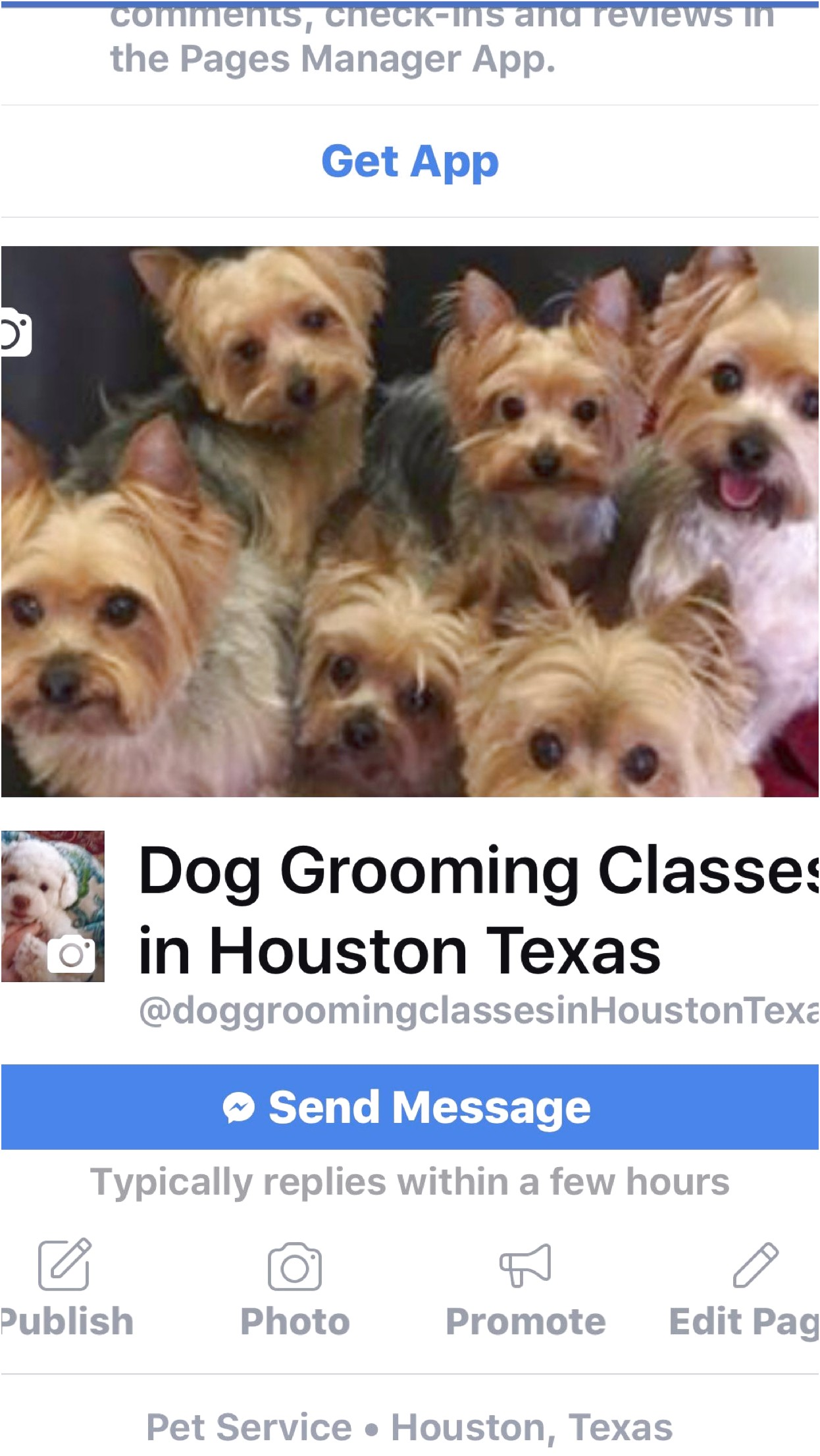Dog Grooming Classes