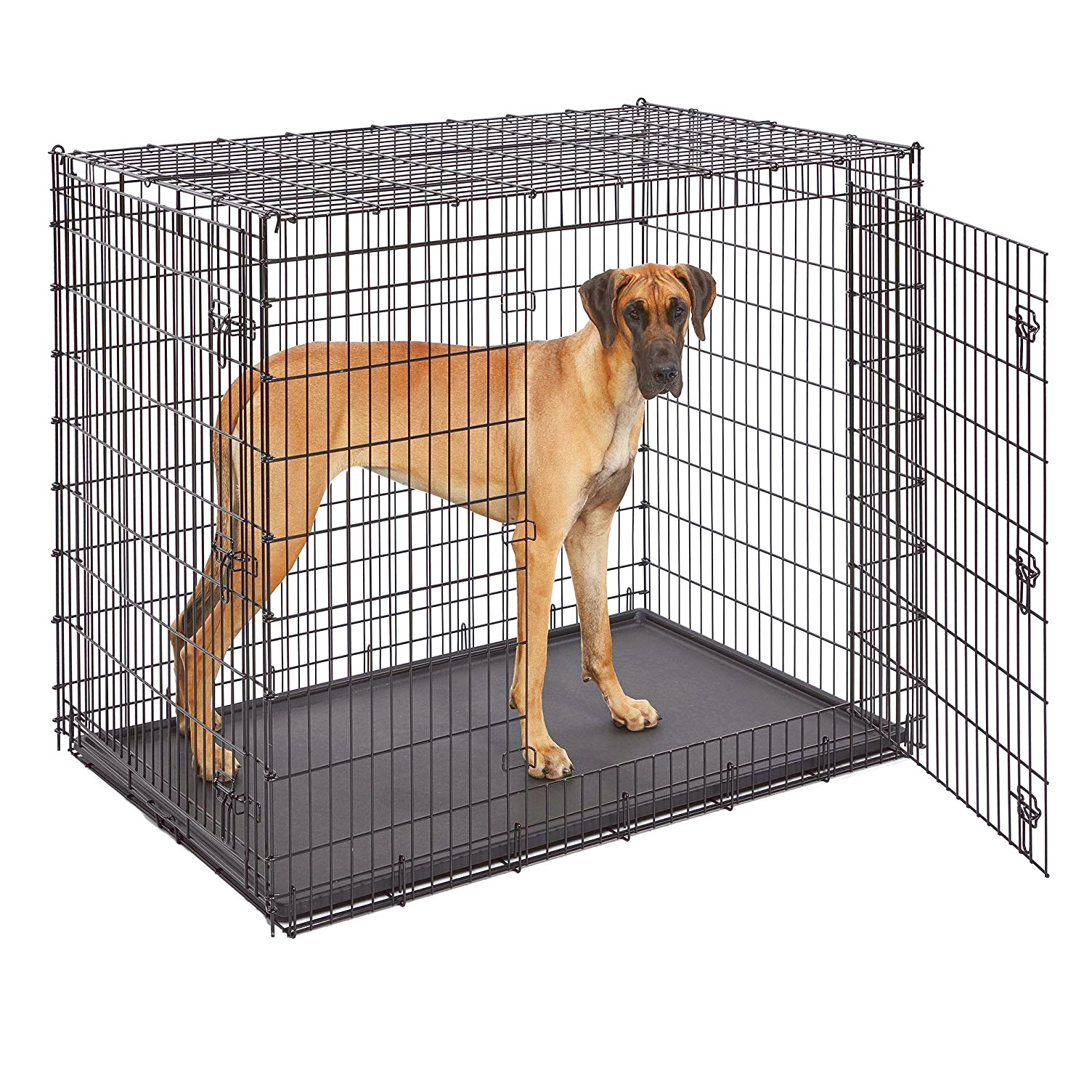 Extra Large Dog Crate Great Dane