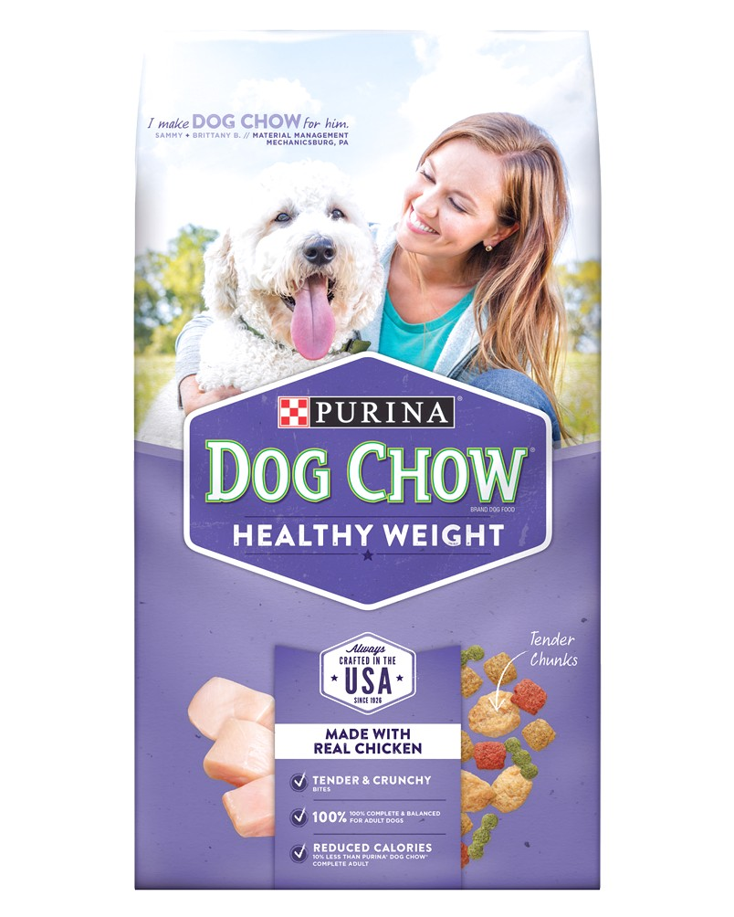 best dog food for older small dogs