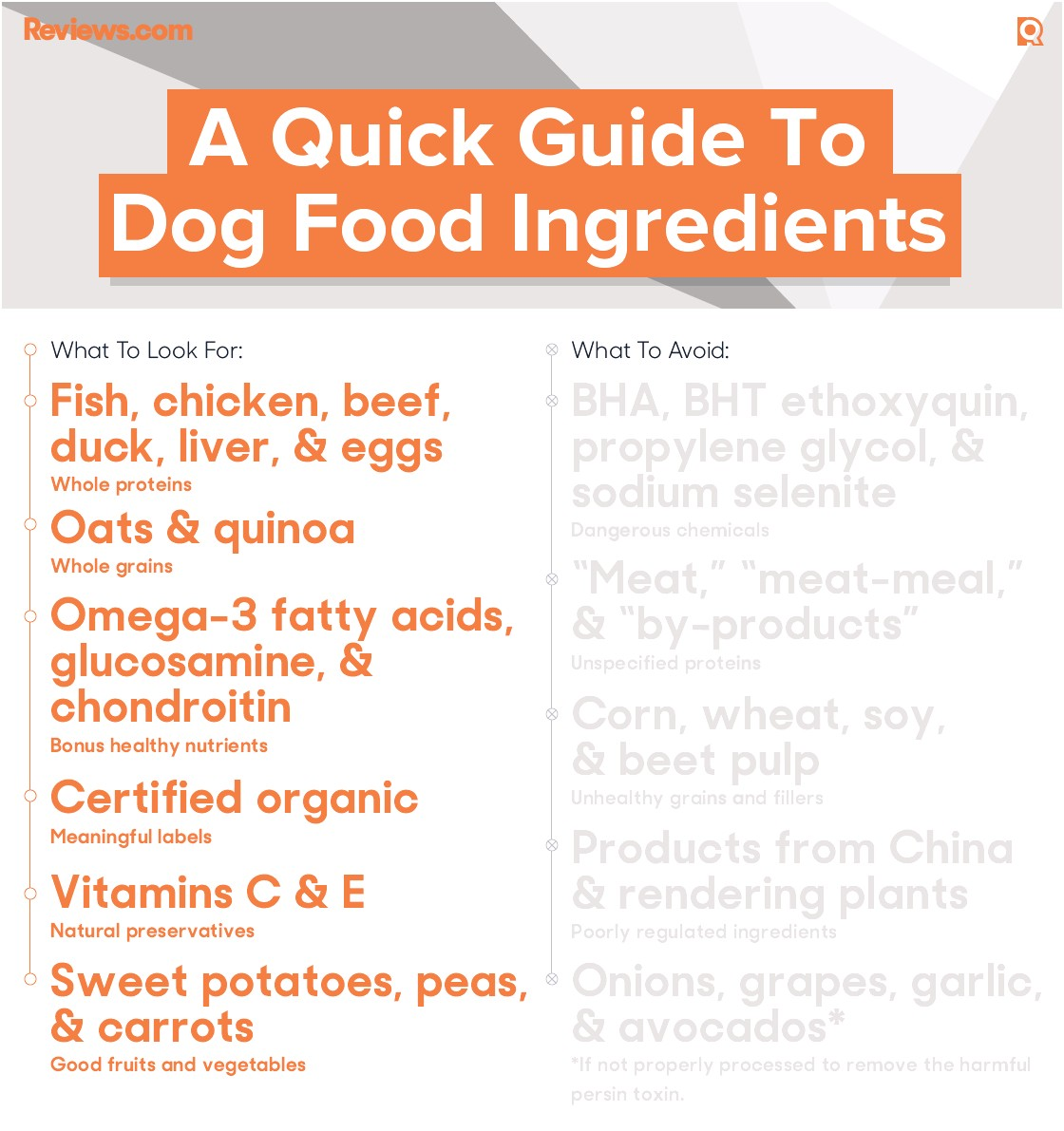 best dry dog food for my dachshunds