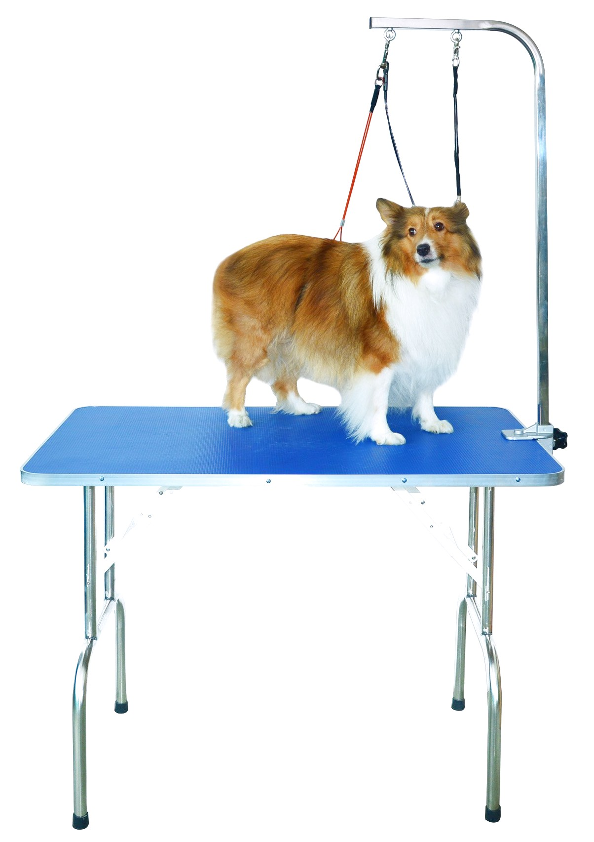 best grooming table for large dogs