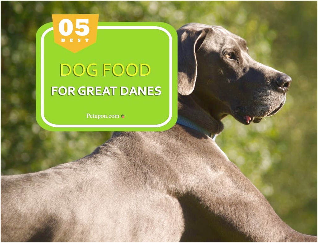 best limited ingredient dog food for boxers