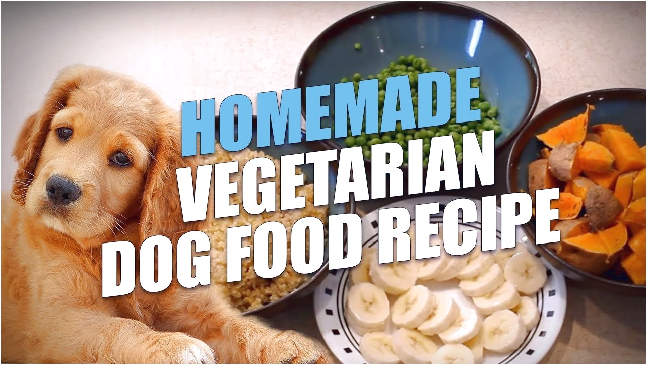 best vegan dog food for small dogs
