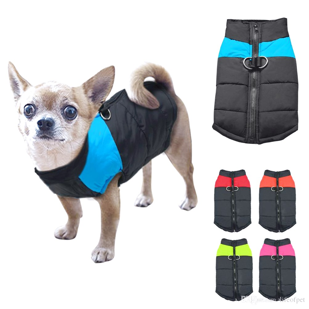 cheap dog clothes for chihuahuas