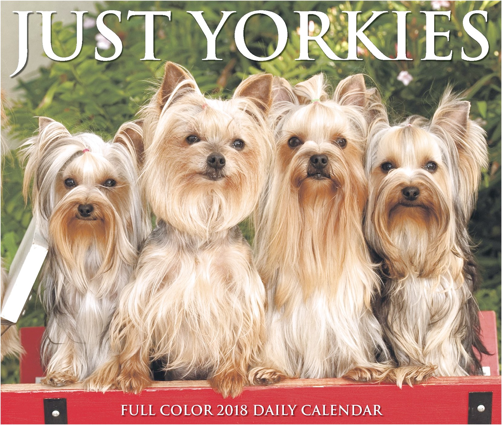 cost of a yorkshire terrier puppies
