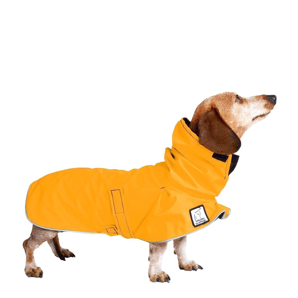 dachshund raincoats