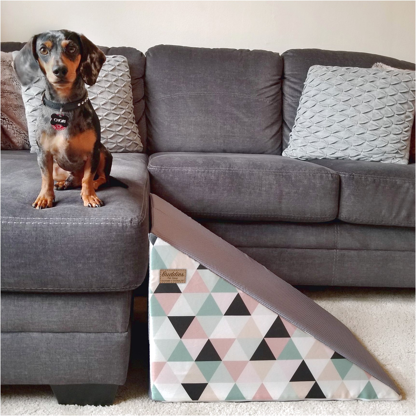 dachshund ramp for couch