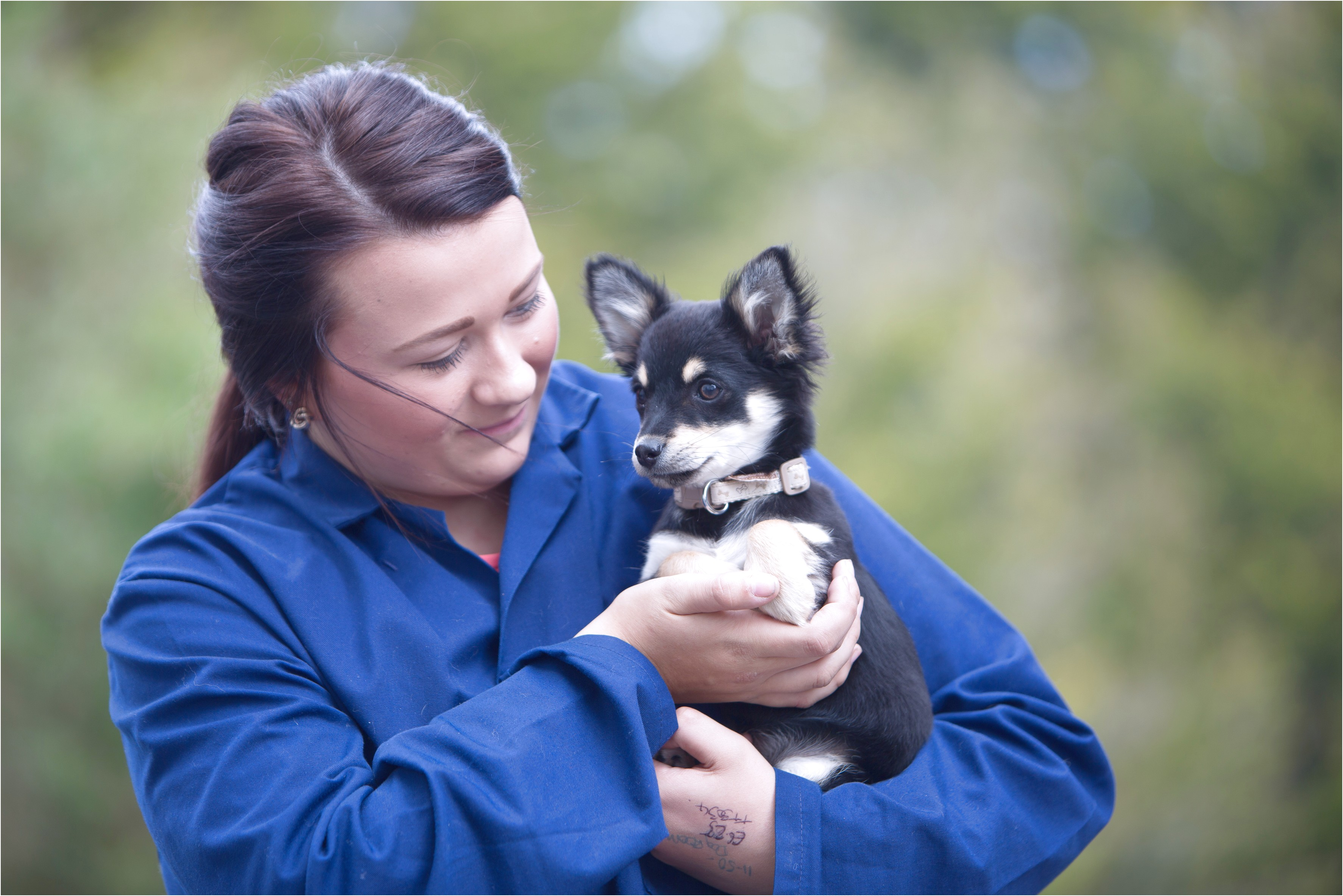 dog grooming courses near exeter