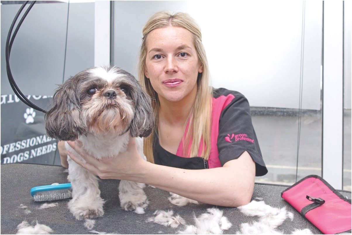 dog grooming courses near preston