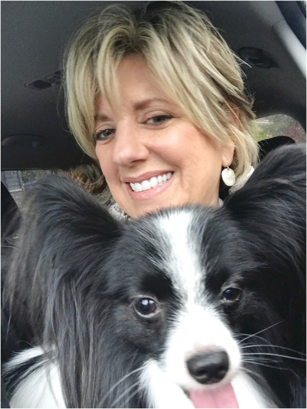dog grooming courses near rugby