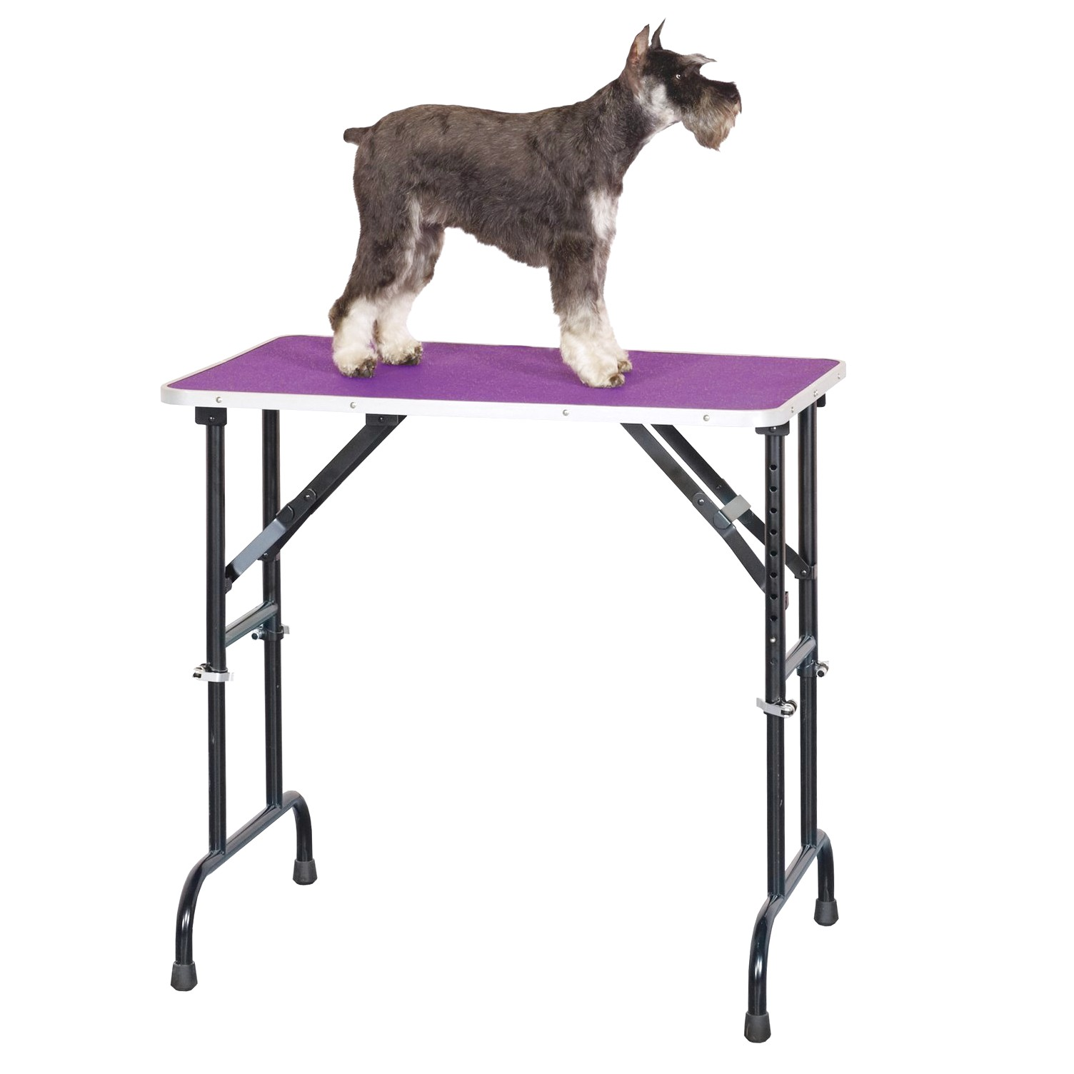 dog grooming table for rent