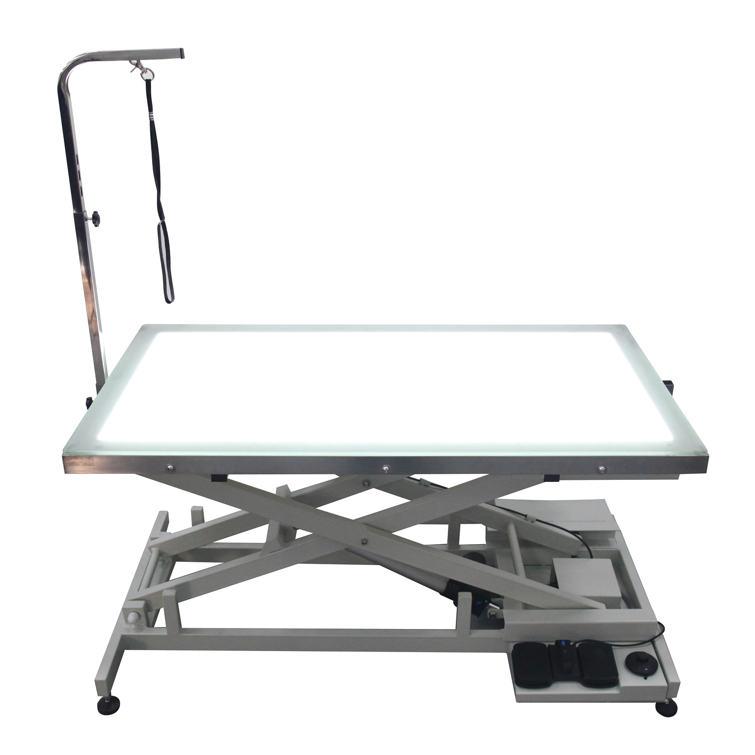 electric grooming tables for large dogs