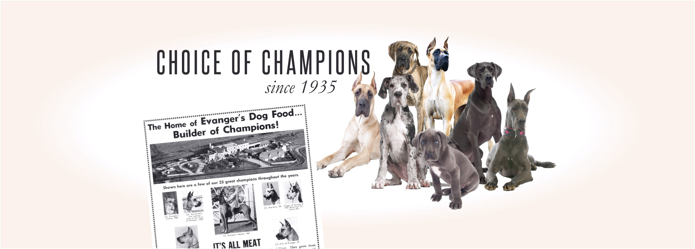 good dog food brands for great danes