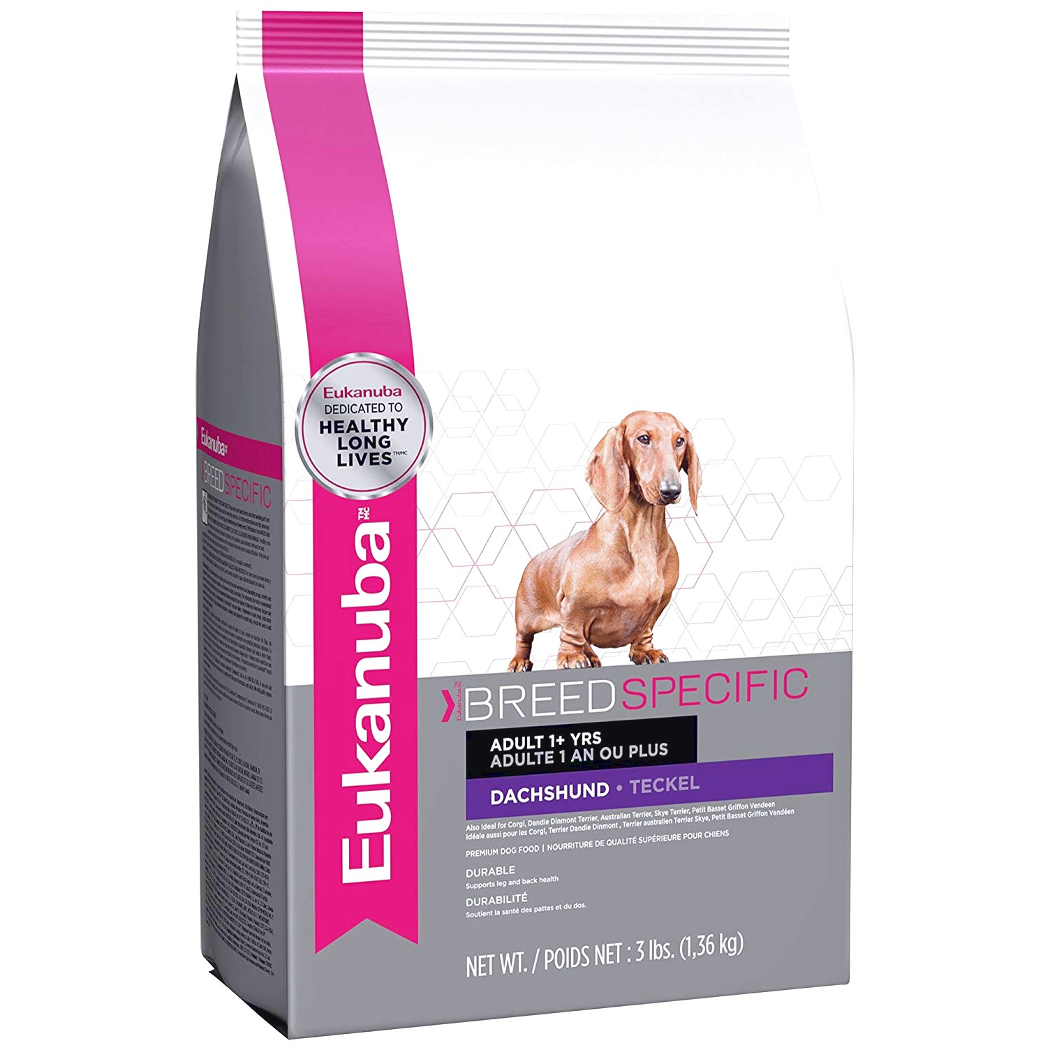 good dog food for dachshunds puppies