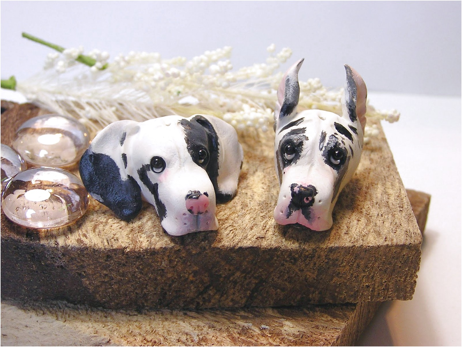 great dane puppies for sale in ohio ebay