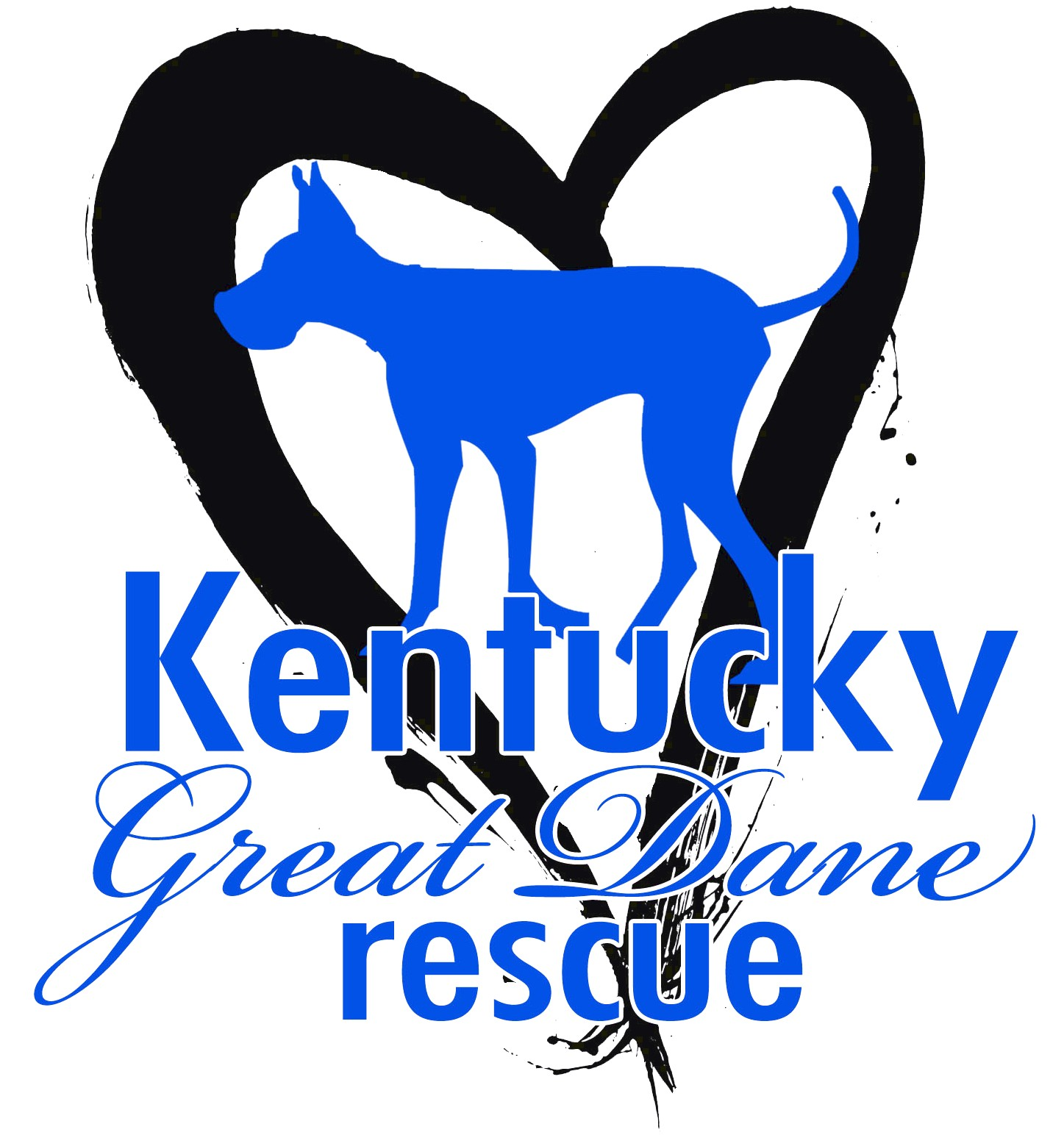 great danes for adoption in kentucky