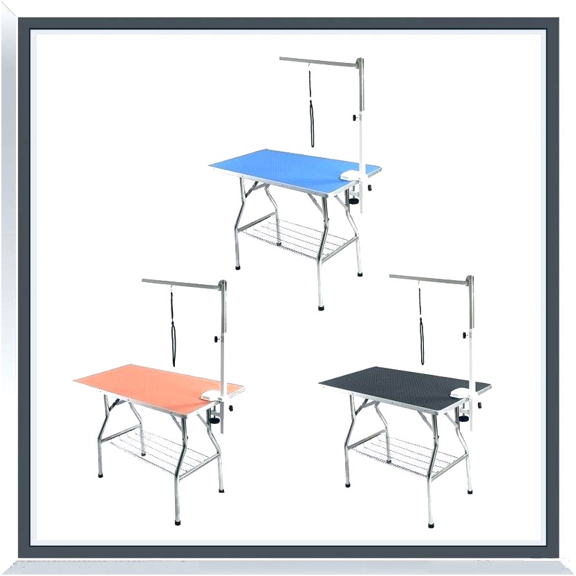 grooming table for dogs singapore