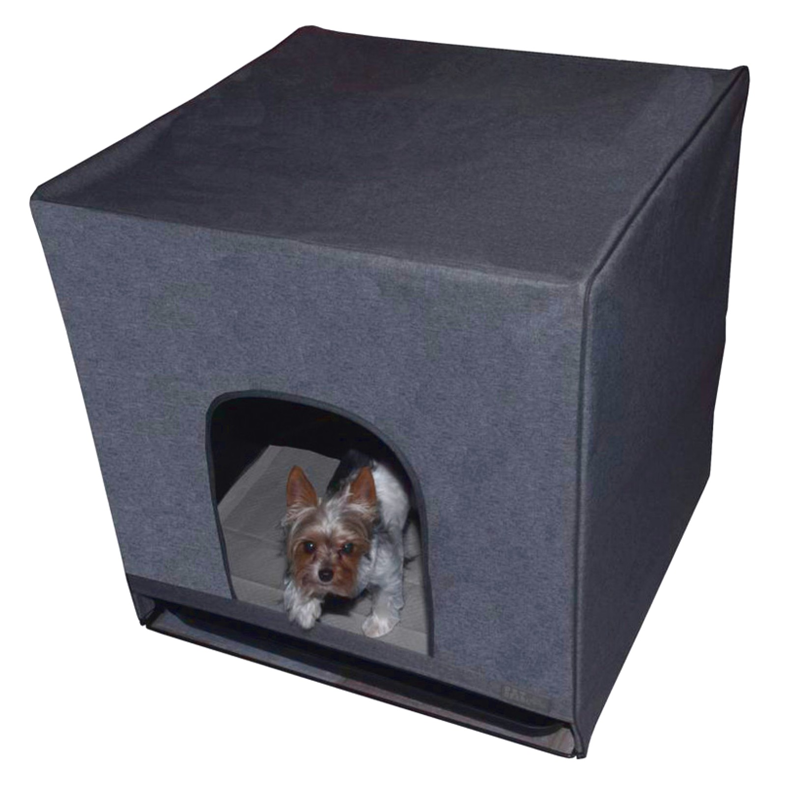 how to potty train a chihuahua in a litter box