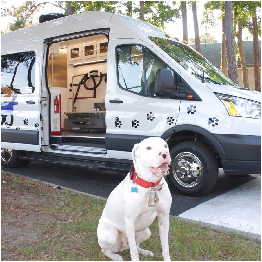 mobile dog grooming memphis