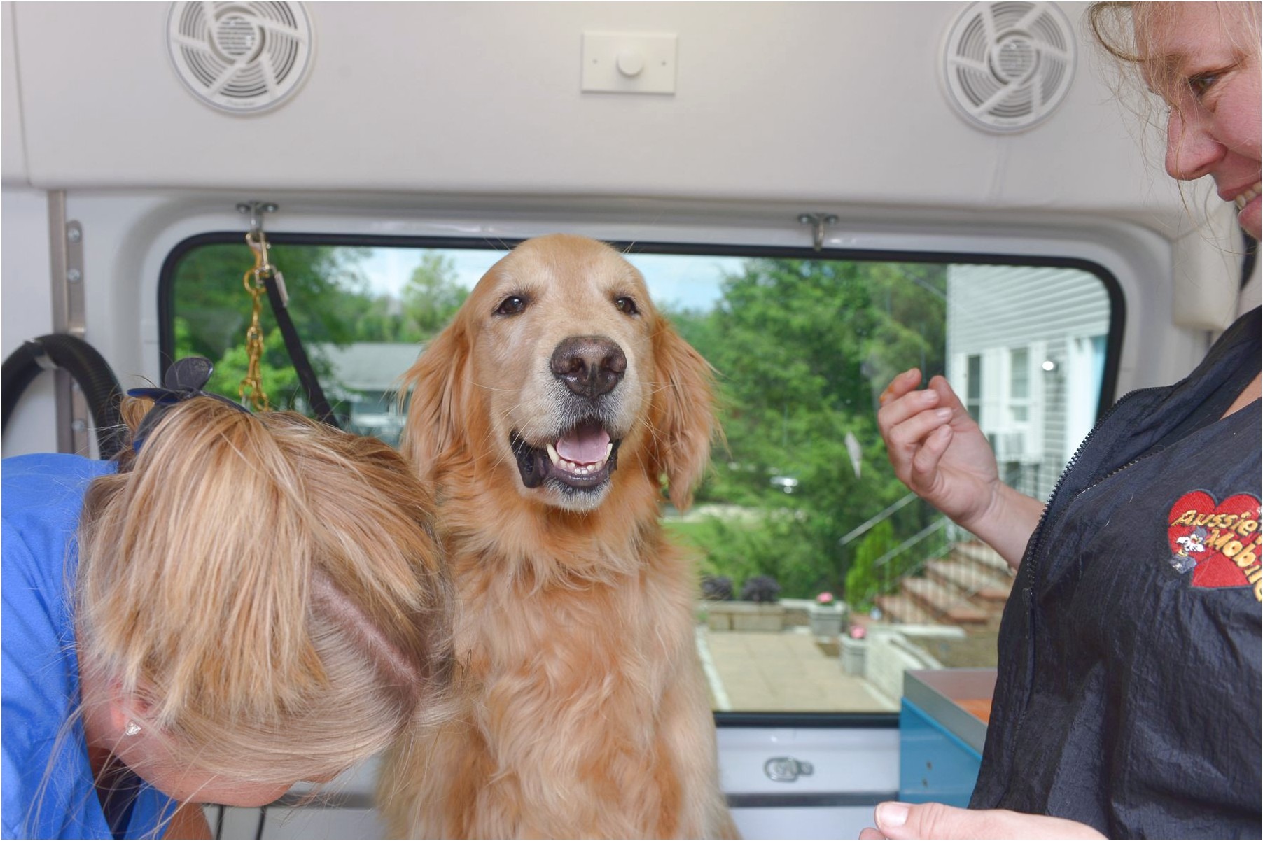 mobile pet grooming near youngsville nc