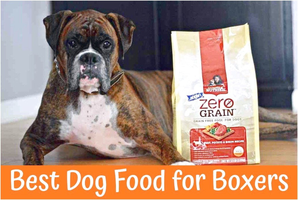 top 5 dog food for boxers