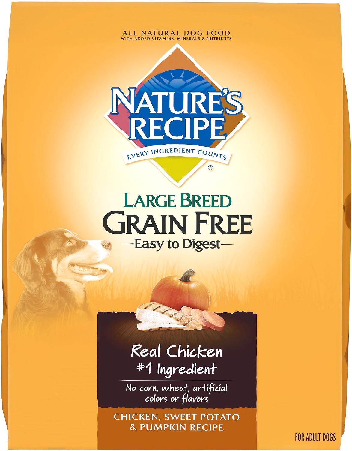 what is the best grain free dog food for large breeds