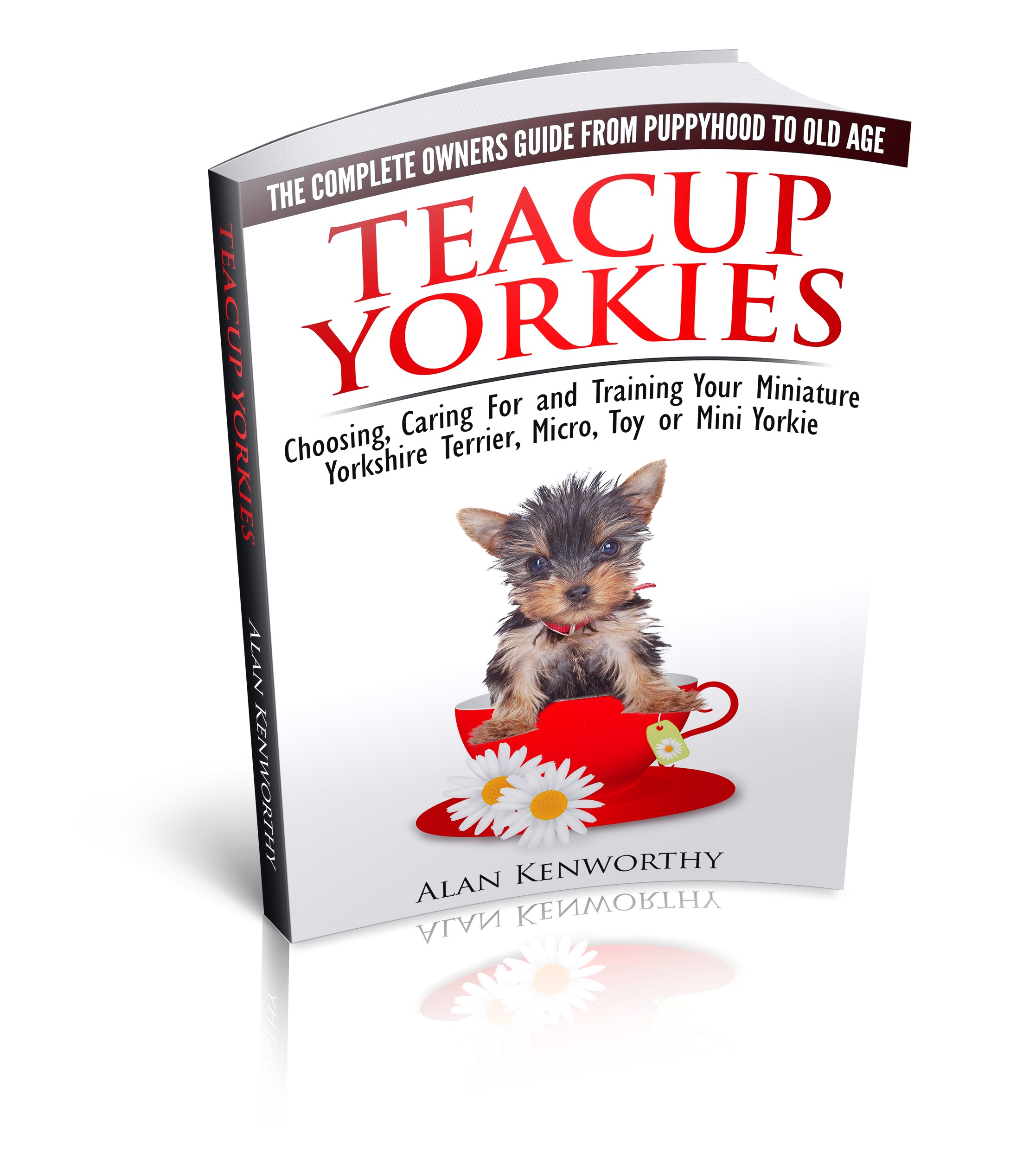 yorkshire terrier puppy training guide
