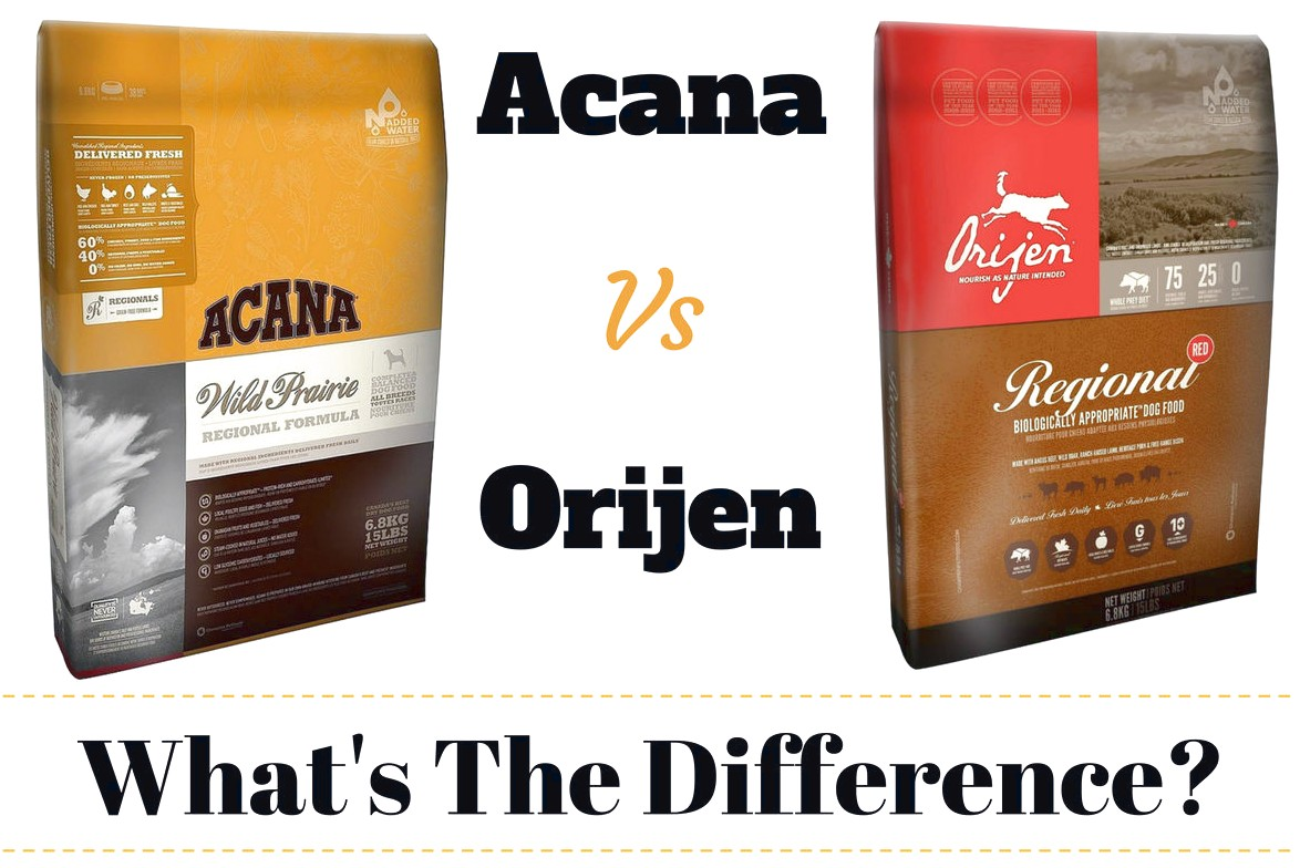 Acana Dog Food Reviews