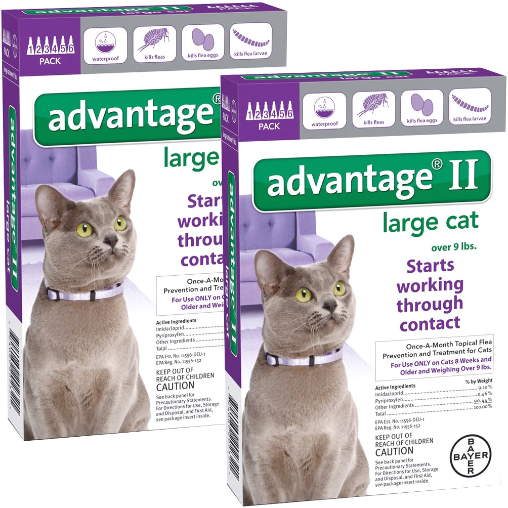 Advantage Ii For Large Cats