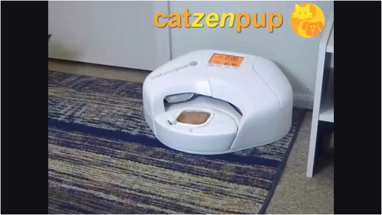 Automatic Cat Feeder Wet Food