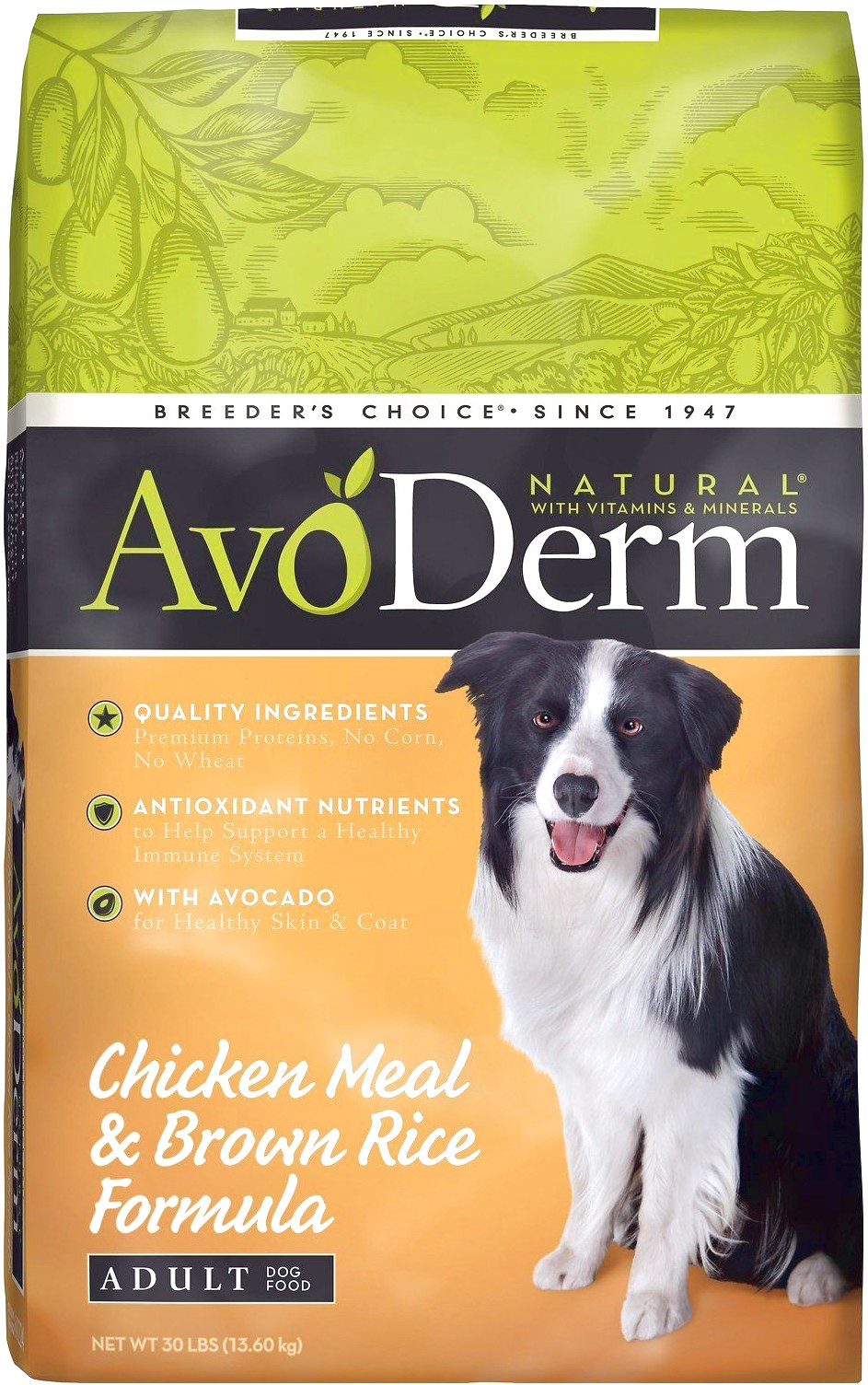 Best Dog Food To Lose Weight