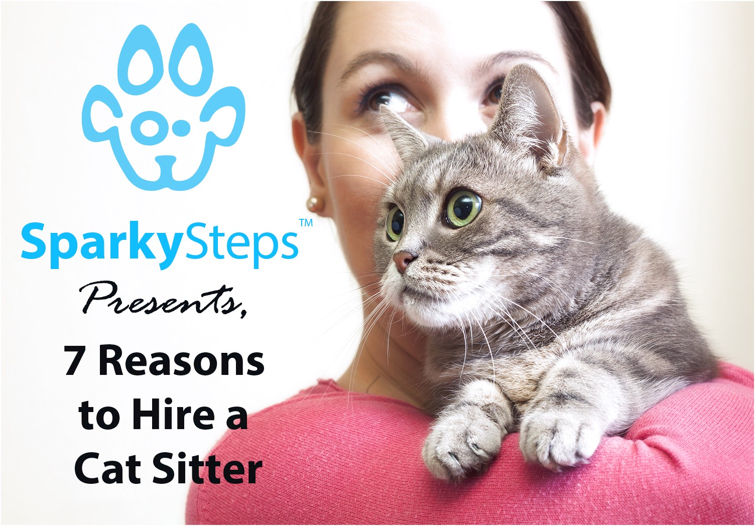 Cat Sitter Chicago