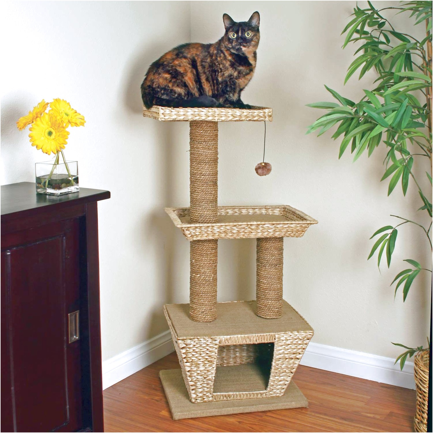 Cat Tower Petco