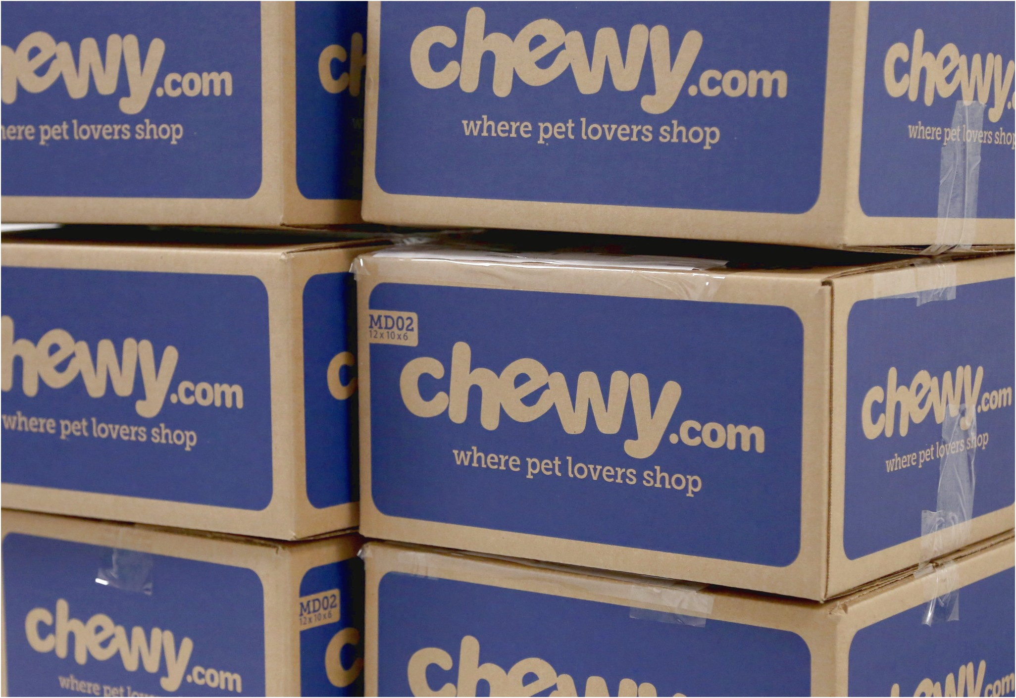 Chewy Dog Food Brands