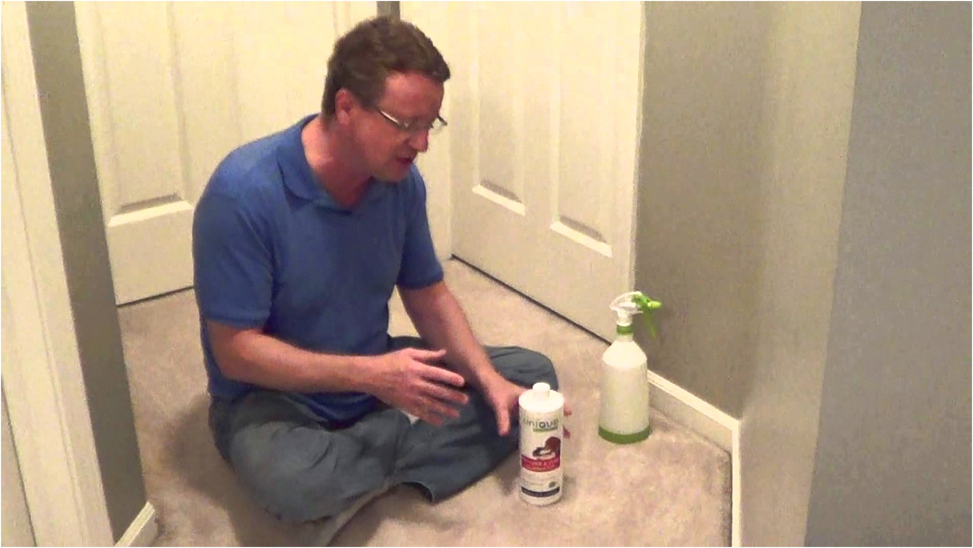 Cleaning Cat Urine From Carpet
