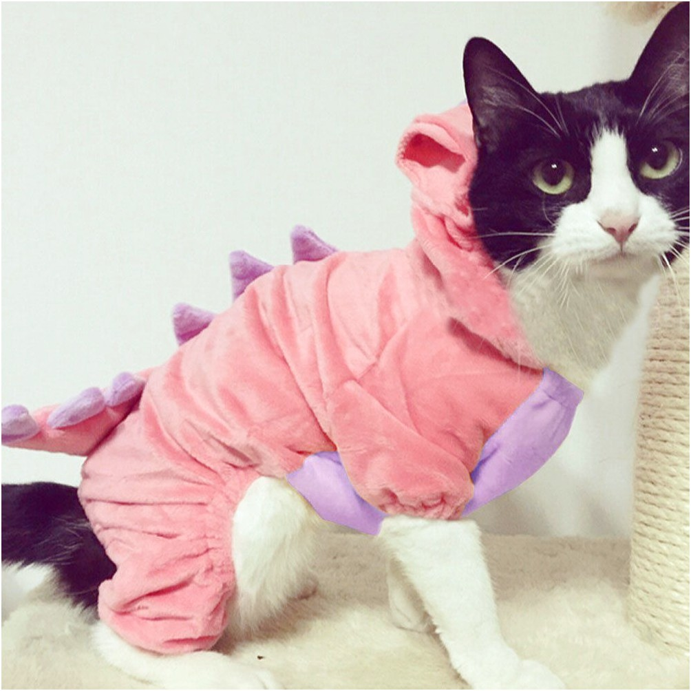 Costumes For Cats Amazon
