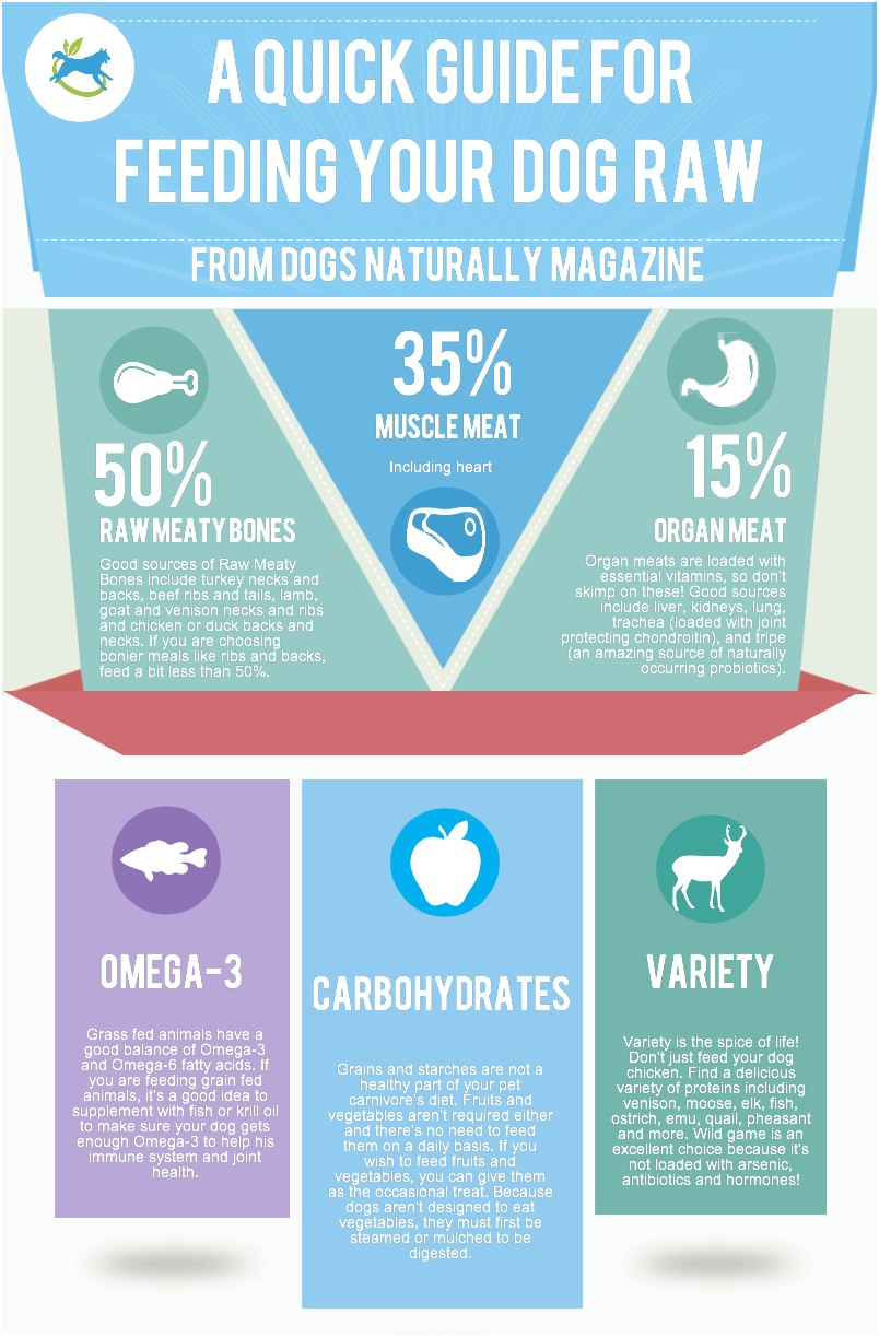 Dog Raw Food Diet Plan