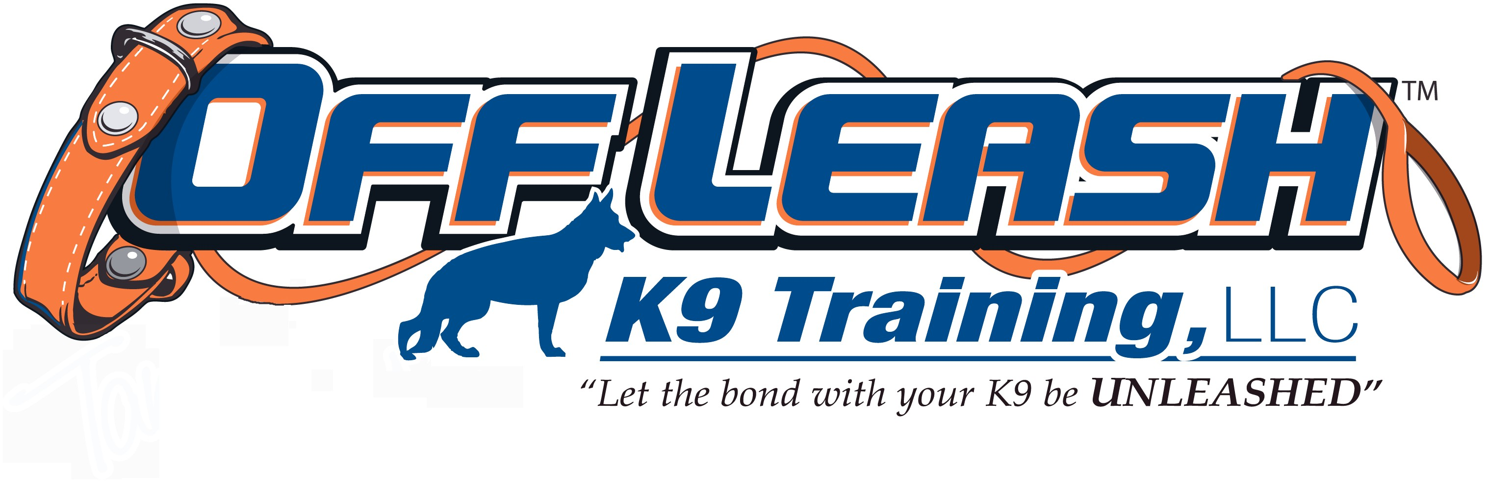 Dog Training Boise