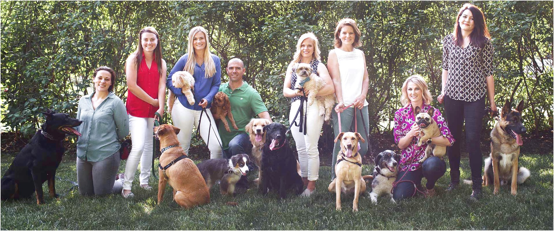 Dog Training Kansas City