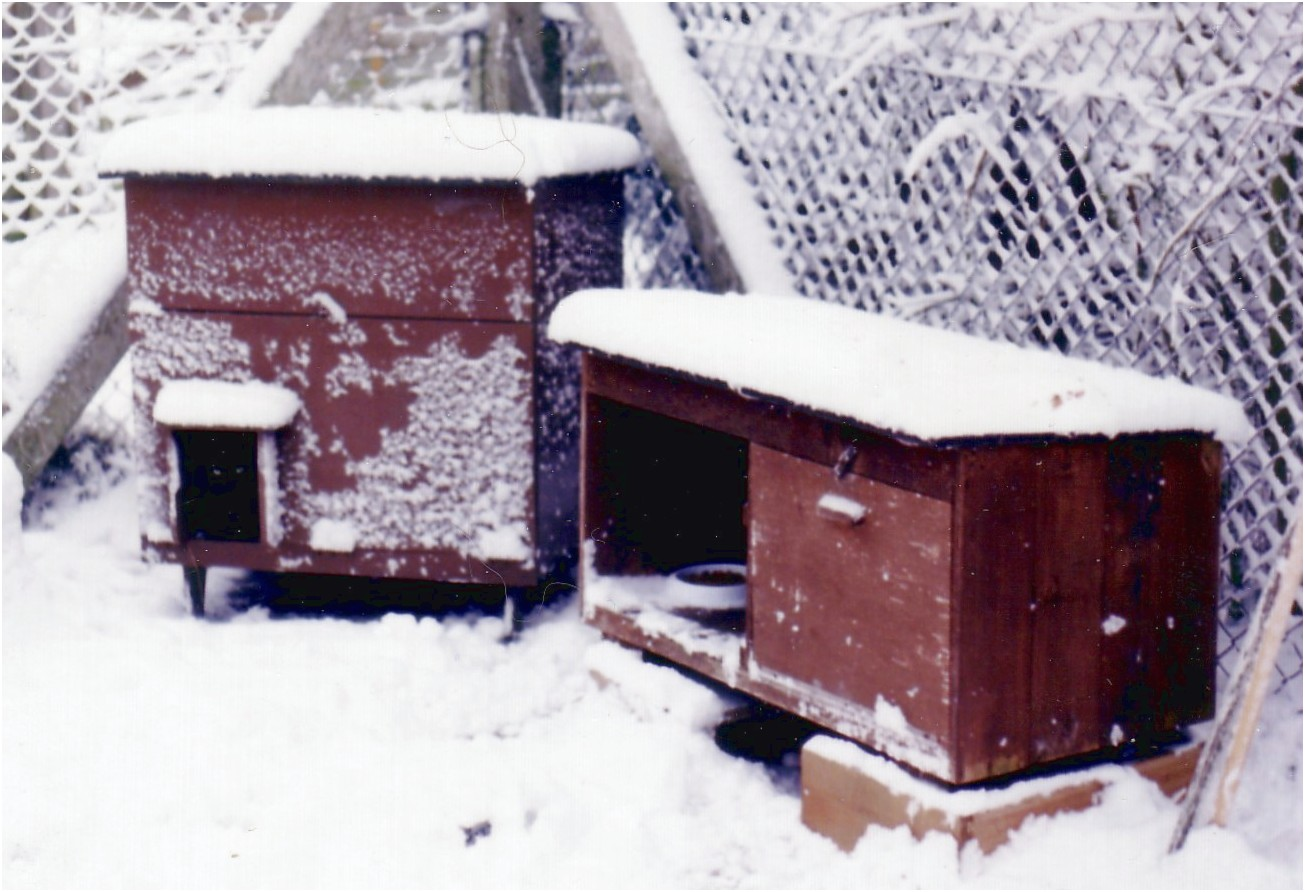 Feral Cat Shelters For Sale