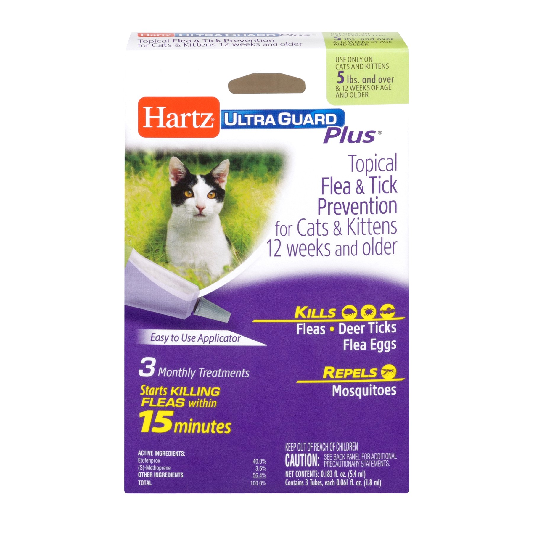 Flea And Tick Prevention For Cats
