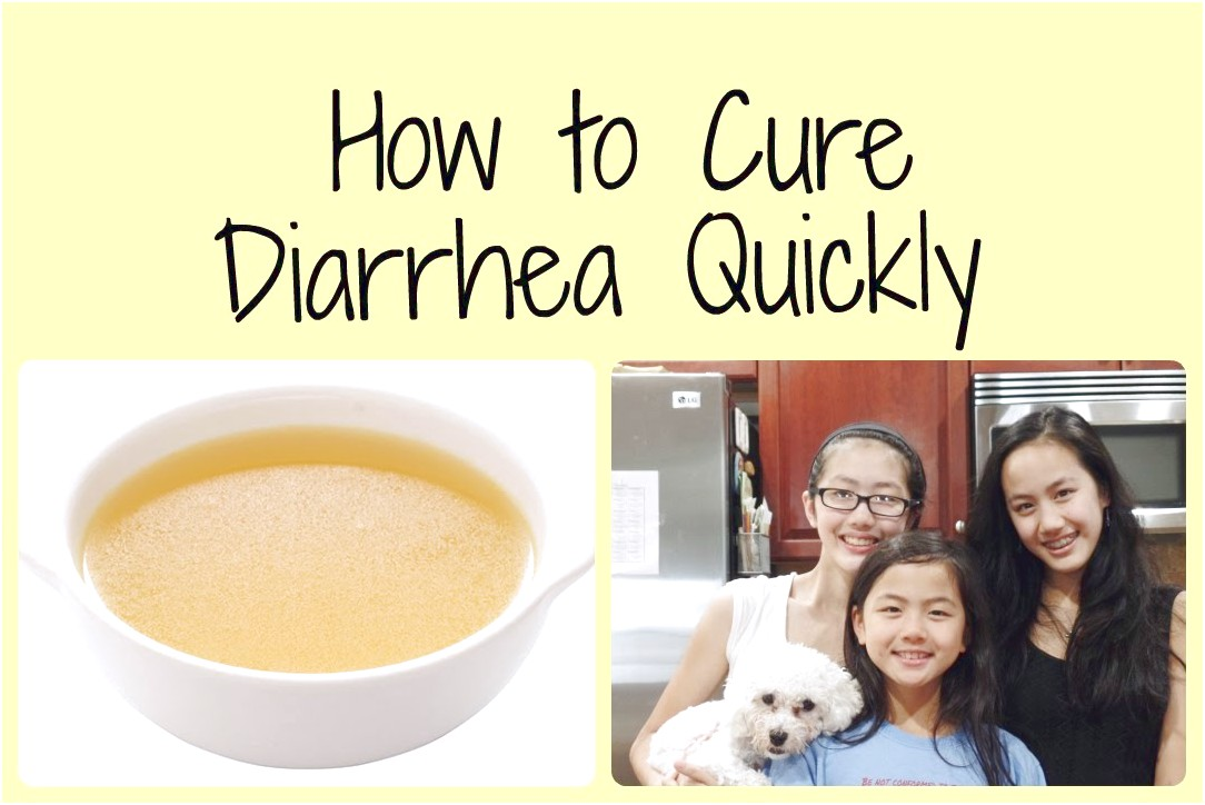 Food For Dogs With Diarrhea