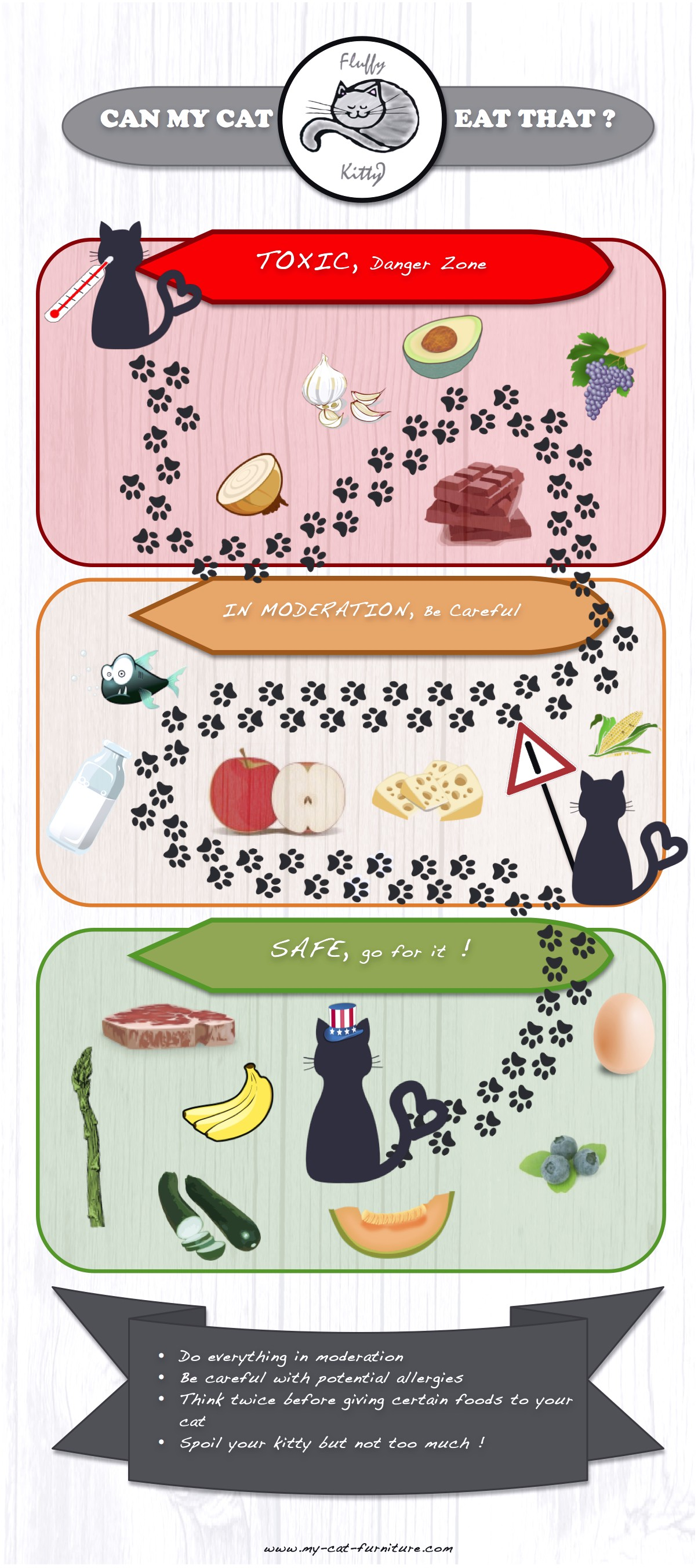 Foods Safe For Cats