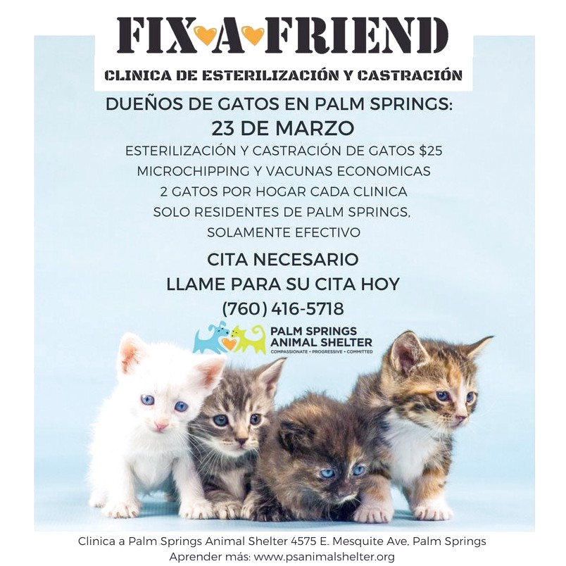 Free Spay And Neuter Clinics For Cats