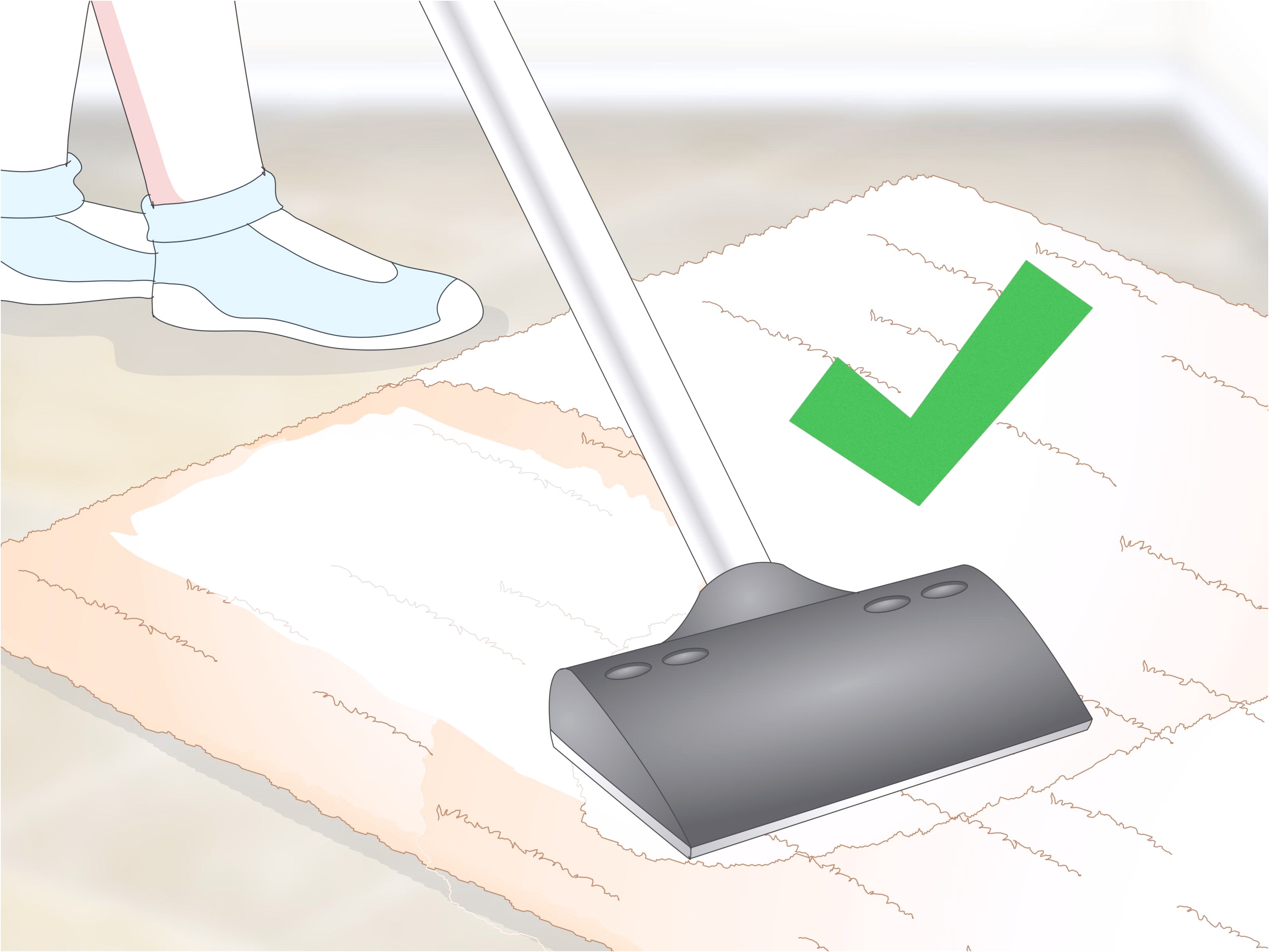 How To Get Cat Pee Smell Out Of Carpet