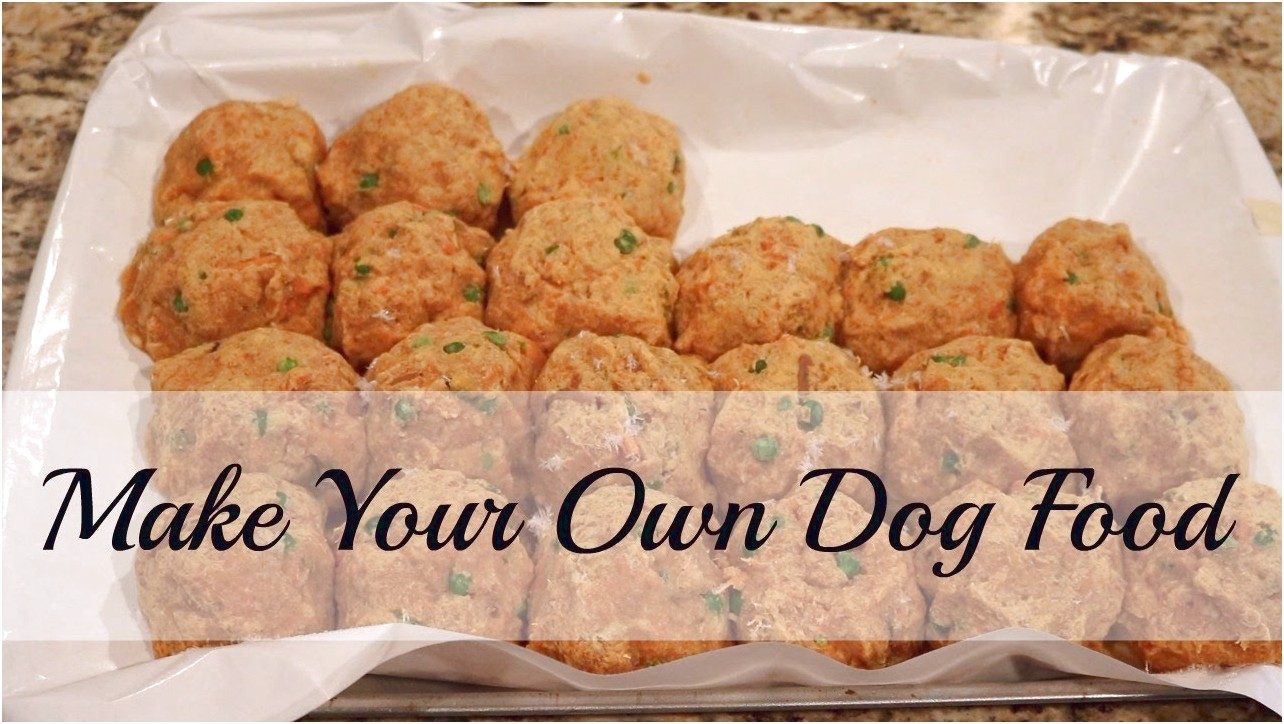 How To Make Your Own Dog Food