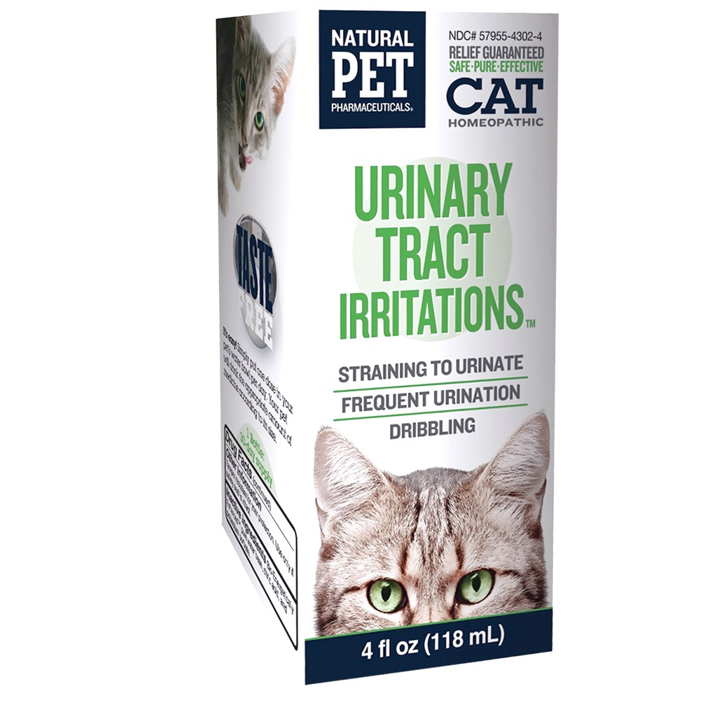 How To Treat Uti In Cats