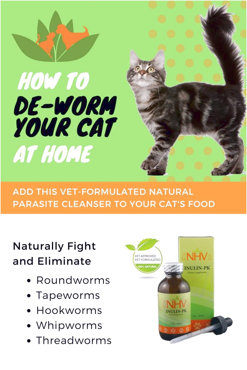 Natural Dewormer For Cats
