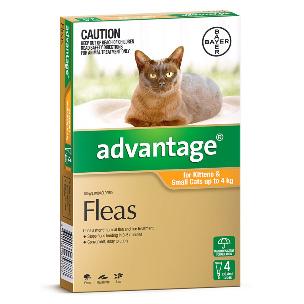 Nexgard For Cats
