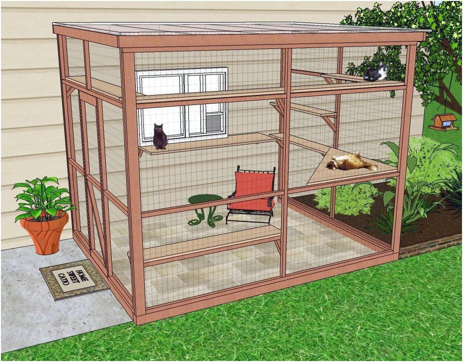 Outside Cat Enclosures
